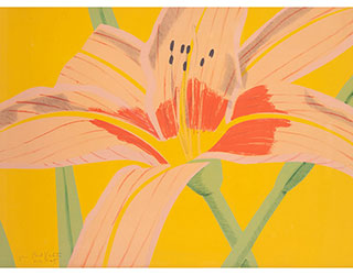"Buy the original print ""Day Lily 2"" (small) by Alex Katz (Painter, Pop Art) at our gallery."